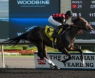 Jesse Campbell guides Tucci Stable's Riker to victory in the $125,000 Swynford Stakes at Woodbine. Photo by Michael Burns Photography