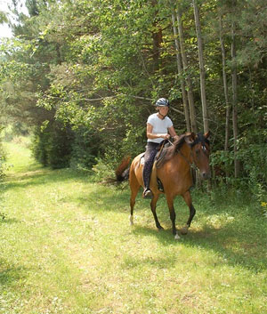 Connected Trail Riding – Horse Canada