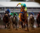 American Pharoah wins the 5 million Breeders' Cup Classic and racing's first-ever Grand Slam title, with Victor Espinoza in the irons. Photo by Matt Wooley/EquiSport Photos
