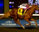 Jockey Luis Contreras guides Amis Gizmo to victory in the $125,000 Frost King Stakes at Woodbine. Photo by Michael Burns Photography