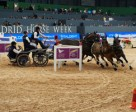Australia's Boyd Exell claimed his second win in a row with victory at the inaugural edition of FEI World Cup™ Driving in Madrid (ESP).Photo by FEI/Hervé Bonnaud
