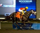 Patrick Husbands guides Kingsport to victory in the $125,000 Sir Barton Stakes at Woodbine. Photo by Michael Burns Photography