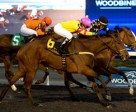 Alan Garcia guides Trini Brewnette to victory in the $125,000 South Ocean Stakes at Woodbine. Photo by Michael Burns Photography