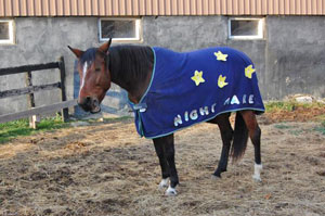 Spring Song as the Night Mare.