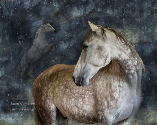 ghost-Horse