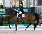 Canadian Olympian Belinda Trussell of Stouffville, ON and her long-time partner, Anton, earned top finishes at the CDI 5* FEI Grand Prix level during week five of the Adequan Global Dressage Festival, held Feb. 10-14 in Wellington, FL. Photo by Cealy Tetley - www.tetleyphoto.com