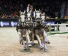 IJsbrand Chardon (NED) was extremely happy with his FEI World Cup™ Driving title. Photo by FEI/Eric Knoll