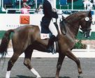 Dressage Canada (DC) is pleased to name Gina Smith as the DC Volunteer of the Month for April. Pictured at the 1986 World Championships aboard Malte, Smith has been involved in the dressage community as a high performance athlete, coach, chef d'équipe, and dedicated volunteer for many years. Photo by Courtesy of Equine Canada