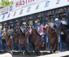 Their off in the sixth race on Sunday afternoon at Hastings. The eventual winner is number 8, Twistgrips, who didn't break all that well. Photo by Patti Tubbs