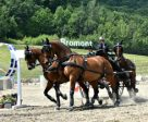 James Fairclough won the CAI2* Horse Four-in-Hand Bromont International Driving. Photo by Tom von Kapherr Photography