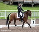 Peter Barry (CAN) and Long Island T, leaders after the CCI2* dressage. Photo by Cealy Tetley
