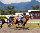 Swift Thoroughbreds' Snuggles seen winning the Emerald Downs Stake at Hastings Racebourse. Photo by Patti Tubbs