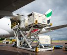 Horses bound for the Rio 2016 Olympic Games are loaded on to an Emirates SkyCargo Boeing 777-F at London Stansted Airport. On the flight were 34 horses from 10 of the nations competing in Equestrian at Rio 2016 - 29 July 2016 - © FEI / Jon Stroud Media