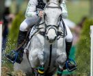 Shane Rose and CP Qualified lead the victorious Australian team in the FEI Nations Cup™ Eventing, and finish individual 2nd, at Aachen (GER). Photo by FEI/Dirk Caremans