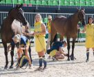 Sweden's Frida Andersen (left) and Sarah Algotsson Ostholt (right) attracted the full attention of the photographers during today's Eventing first horse inspection at Deodoro Olympic Park in Rio de Janeiro (BRA). Photo by FEI/Richard Juillart
