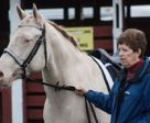 Pam Williams of Nanaimo, BC has been named the Dressage Volunteer of the Month for her countless hours of volunteer service and many contributions to the dressage community in British Columbia. Photo courtesy of Laura Kandall