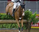 Reigning Olympic champion Michael Jung of Germany won the $20,000 Horseware Indoor  Eventing Challenge on Saturday, November 5, at Toronto's Royal Horse Show.   (Ben Radvanyi Photography)