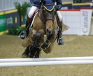 Ian Millar of Perth, ON, riding Dixson is on track to win his record 12th Greenhawk Canadian Show Jumping Champion following the opening round of competition on Friday, November 4, at the Royal Horse Show in Toronto, ON. (Ben Radvanyi Photography)
