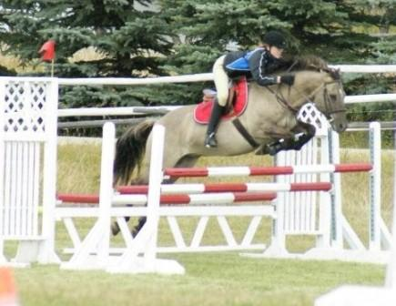 how to become a show jumper canada