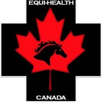 EQUINE EMERGENCY FIRST AID COURSE-CALGARY