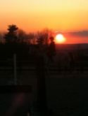 Serenity Valley Stables, Boarding and Training facility, Innisfil