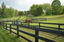 Horse Farm For Sale!  Mins from Palgrave!