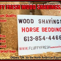 Horse Bedding Wood shavings