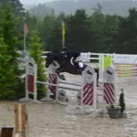 Experienced and Talented A Circuit Jumper for Sale or Paid Lease