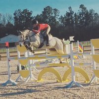 CCI1* Packer with Intermediate Experience