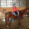 Super personality, beautiful QH mare  ready to work