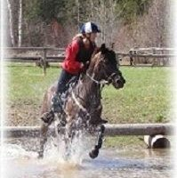 LF: experienced event horse or large pony