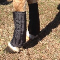 Therapeutic Ice Tendon Boots / Cool Wraps for Horses (1 Pair)