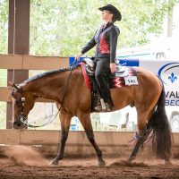 Western Performance Instructor Offering Lessons