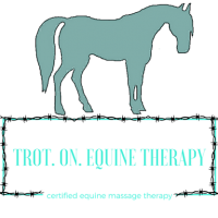 Trot. On. Equine Therapy (Physical Therapy)
