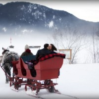Sleigh Ride Business For Sale