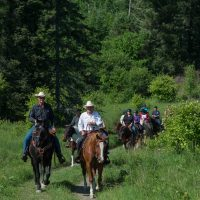 Horseback riding Gift Certificate End of Year Sale!