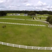 FLORIDA EQUESTRIAN DREAM HOME AND RANCH!