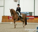 Pia Fortmuller and Orion win the Grand Prix for Freestyle at the CDI3* Zakrzow, held Nov. 8-10 at the Equestrian Centre Park in South Zakrzow, POL. Photo courtesy of Dressage24.PL