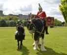 All Creatures Great and Small at the Royal Windsor Horse Show. Photo by Kit Houghton/HPower