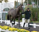 Eric Lamaze and Zigali P S. Photo by Cealy Tetley