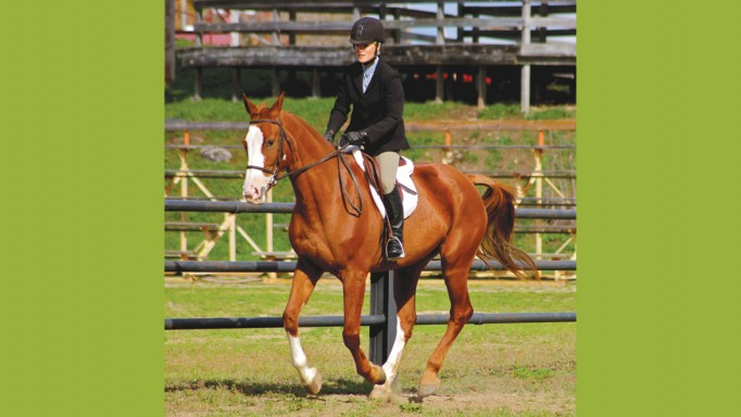 Thumbnail for Speed Control at the Lope & Canter with Kitty Bowland