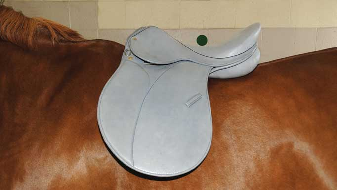 Thumbnail for Saddle Fitting and Performance