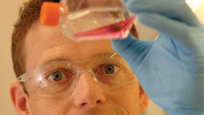 Thumbnail for Stem Cell Reality Check