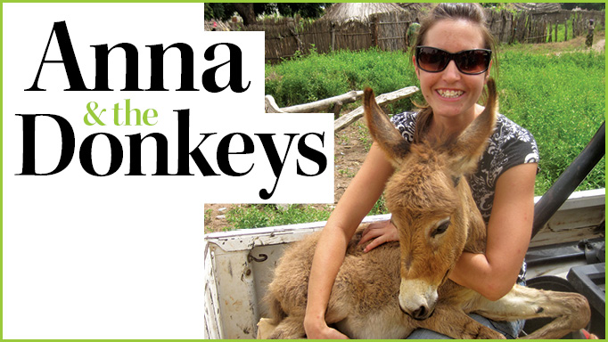 Thumbnail for Anna & the Donkeys