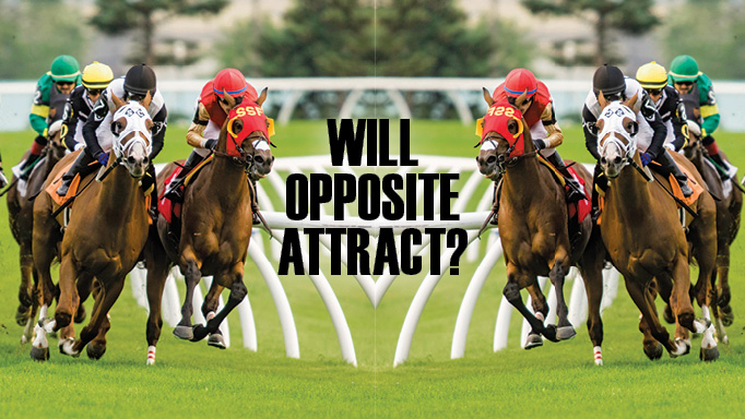 Thumbnail for Will Opposite Attract?