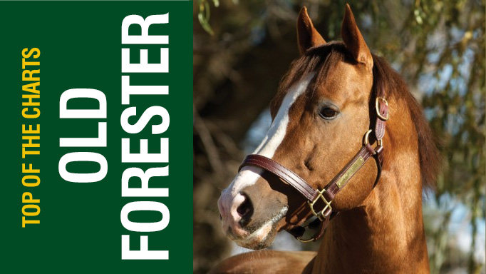 Thumbnail for Top of the Charts : Old Forester