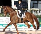 Christilot Boylen and Drentano took third in the FEI Grand Prix Special CDI-W at the Adequan® Global Dressage Festival . Photo by SusanJStickle