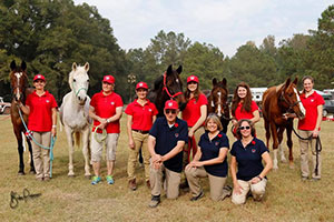 A team of five up-and-coming Canadian endurance athletes, and a full support crew, travelled to South Carolina to contest the 2016 Young Riders Endurance Team Challenge on Nov. 12, 2016. L to R: (Back Row) Lori Nelson, Katrin Levermann, Michelle Knapper, Emma Knapper, Lexi Vollman, Savanah Wilson. (Front Row) Dr. Art King, Sandra Coombe, Sylvia Gillies. Photo by Becky Pearman