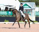 Jaimey Irwin of Stouffville, ON earned back-to-back small tour wins partnered with Donegal V during week three of the Adequan Global Dressage Festival, held Jan. 25-29, 2017 in Wellington, FL. Photo by Susan J. Stickle