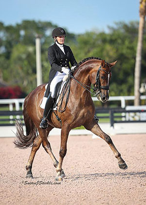 Veteran Canadian Dressage Team member Ashley Holzer, shown here on Sir Caramello, will now ride for the United States. Photo by Susan J Stickle